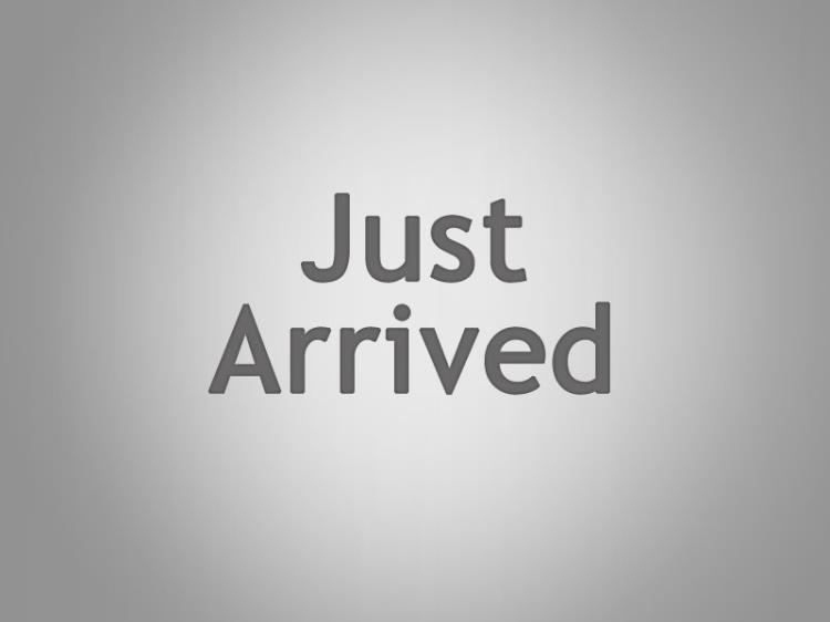 2005 BMW 5 4D SEDAN 30I SPORT E60 05 UPGRADE
